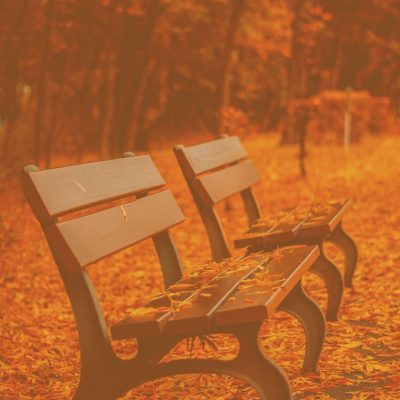 October November Round Up